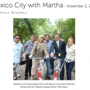 martha stewart mexico city show